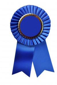 Guild Ribbon Winners | Mountain Piecemakers